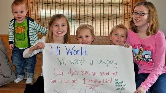 Сладките детски личица и призива за малко пухкаво животинче свършиха работа!